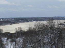 Eile-lasti-Viljandi-järve-50-000-eurot-väärt-kala_Foto_Vello-Veskimäe.jpg