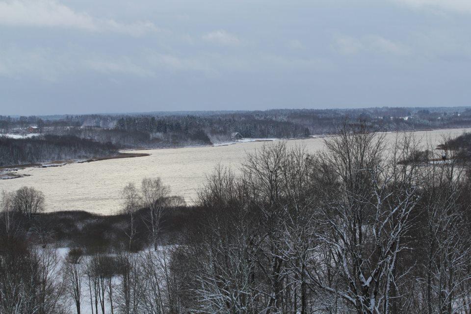 Eile lasti Viljandi järve 50 000 eurot väärt kala