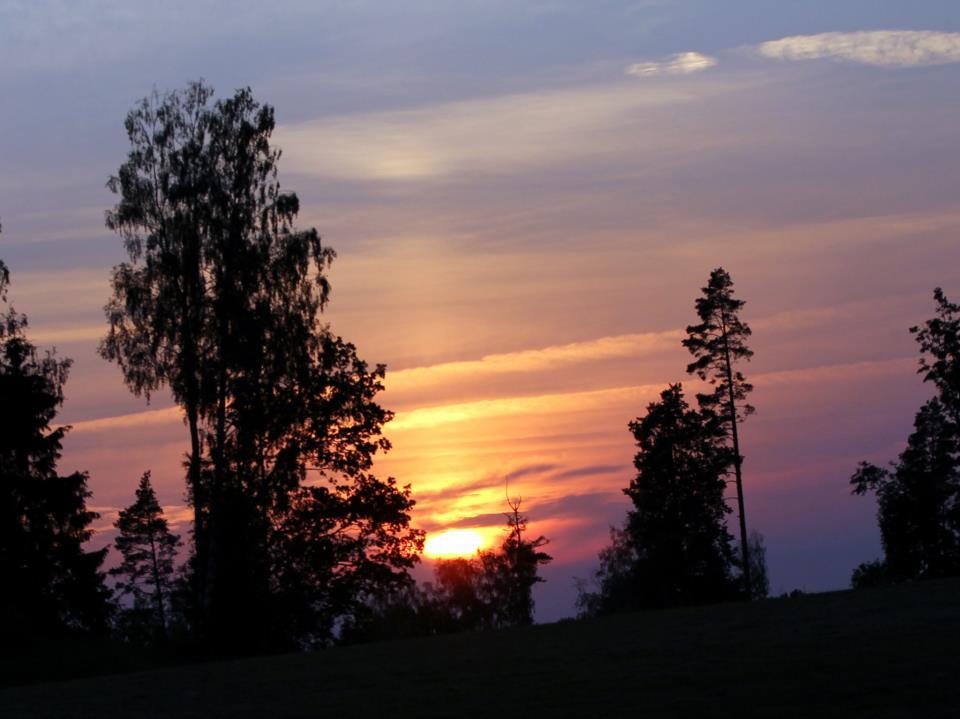 Loodusõhtu Räpinas: meie metsade tervendavatest puudest räägib Ain Raal
