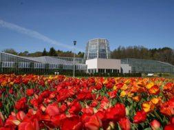 Lastekaitsepäeval-on-kuni-18-aastastele-botaanikaaeda-tasuta-sissepääs.jpg