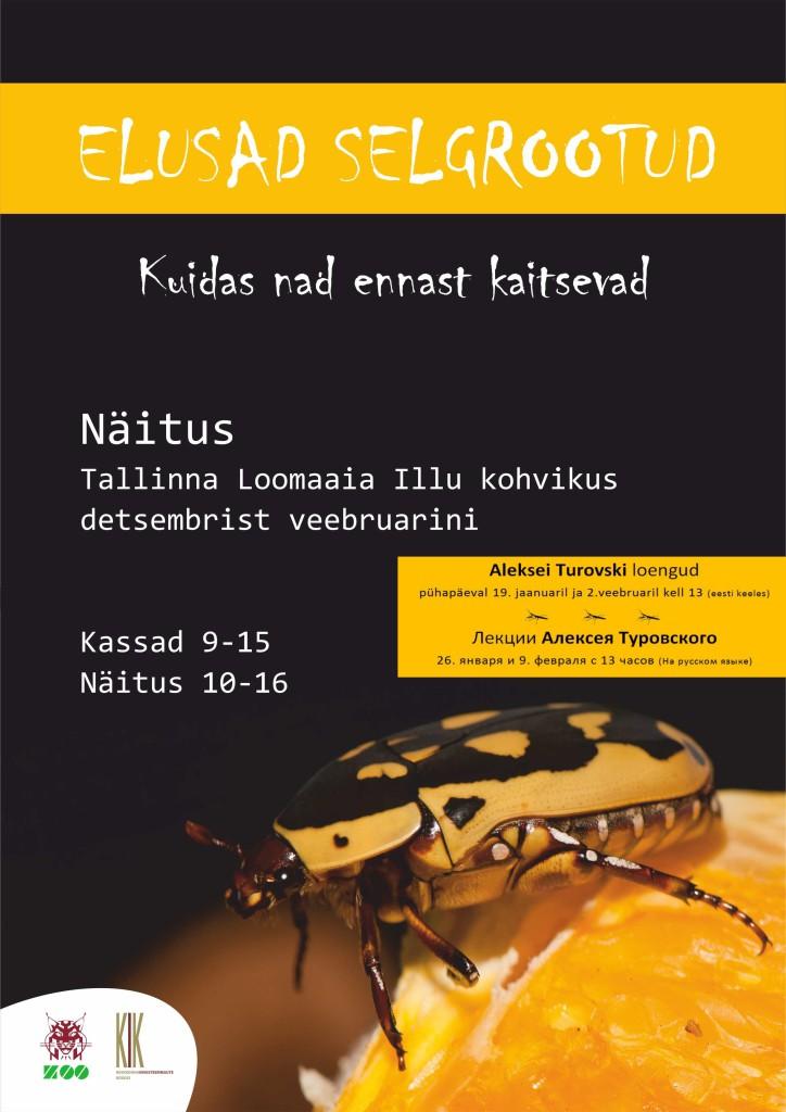 Loomaaia Illu kohvikus on avatud putukanäitus