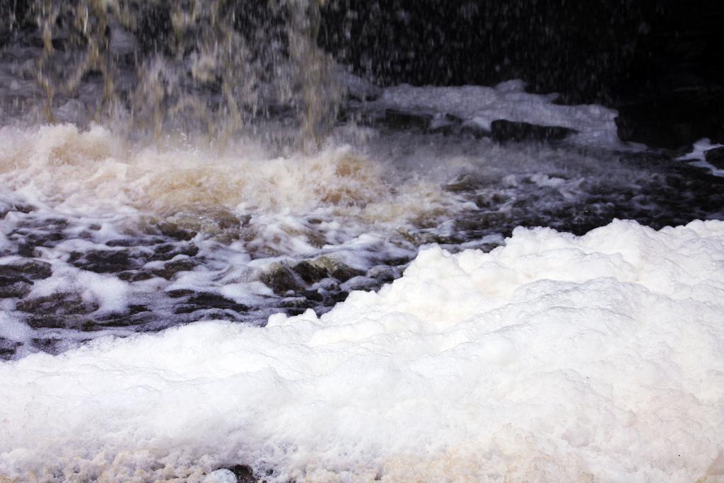 KIK toetas Tamula järve puhtana hoidmist 56 000 euroga