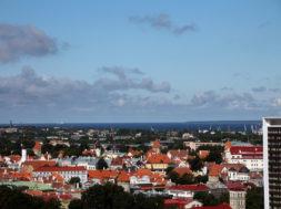 Tallinn-hakkab-parima-haljastusega-korteriühistuid-premeerima.jpg