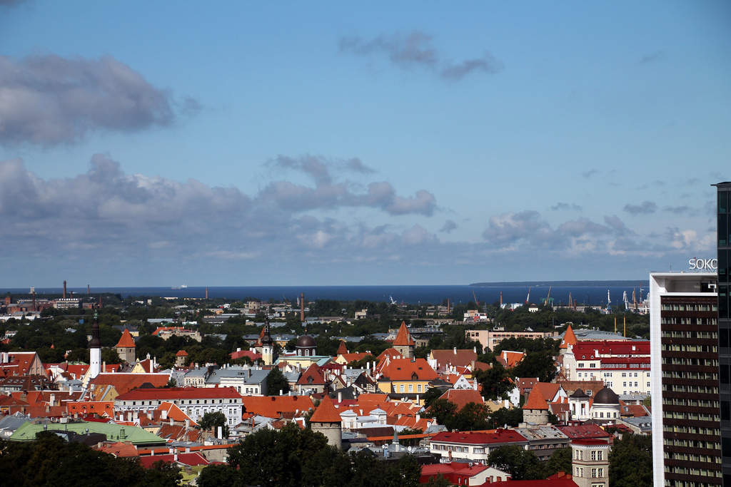 Tallinn hakkab parima haljastusega korteriühistuid premeerima