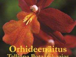 Tallinna-Botaanikaaias-toimub-eksootiliste-orhideede-näitus1.jpg