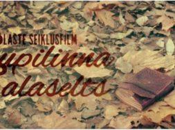 Supilinna_Salaselts_1.jpg