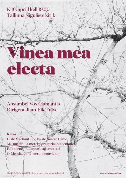 Ansambel Vox Clamantis annab Eestis taas kontserdi2