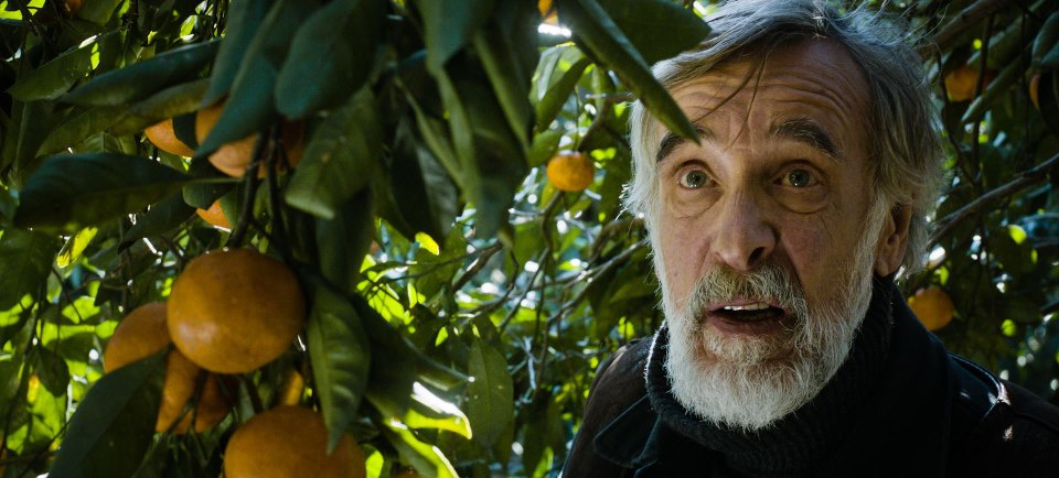 """""""Mandariinid"""" võitis Itaalias Bifest-Bari festivalil Parima Filmi tiitli"""