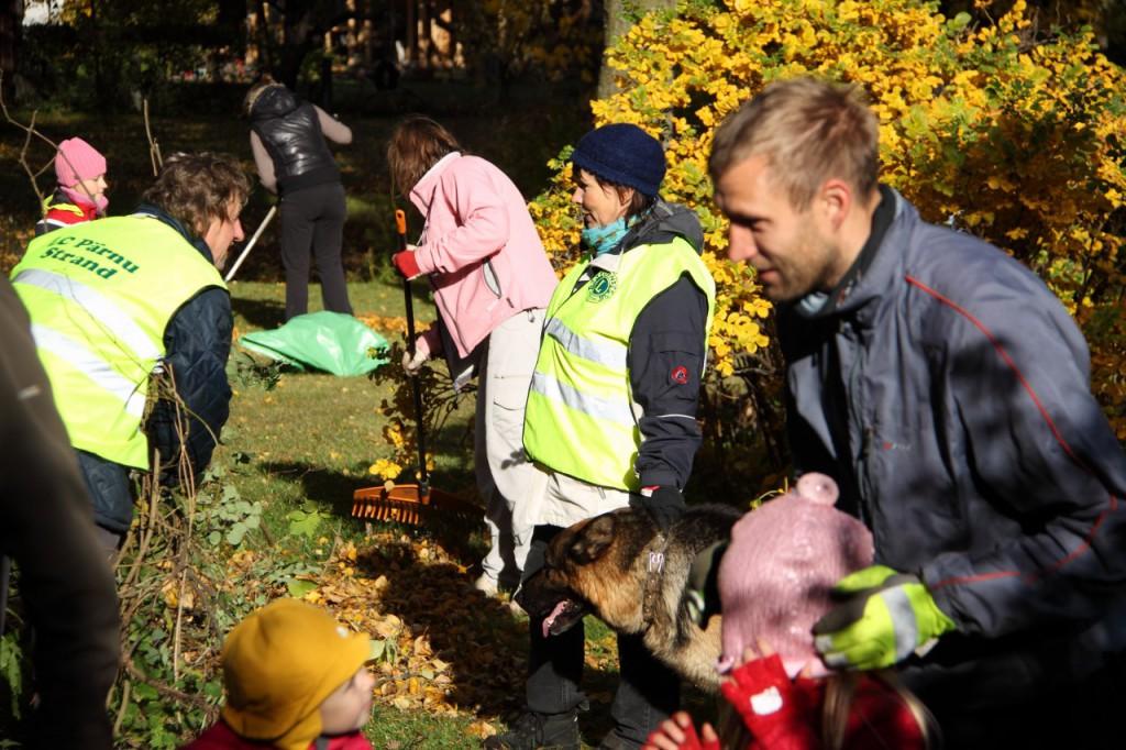 Eesti Lions klubid valmistuvad Heateo päevaks