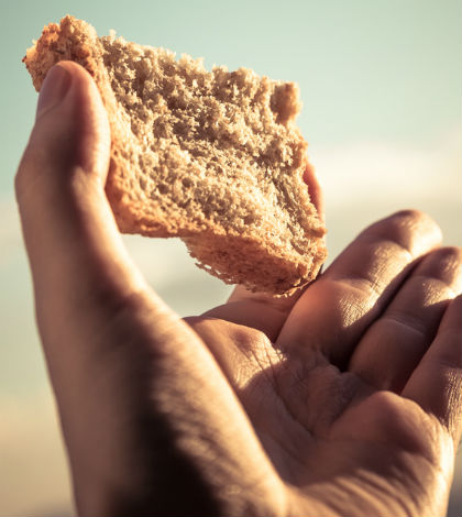 Sel nädalal sai linnalt täiendavat toiduabi 231 perekonda