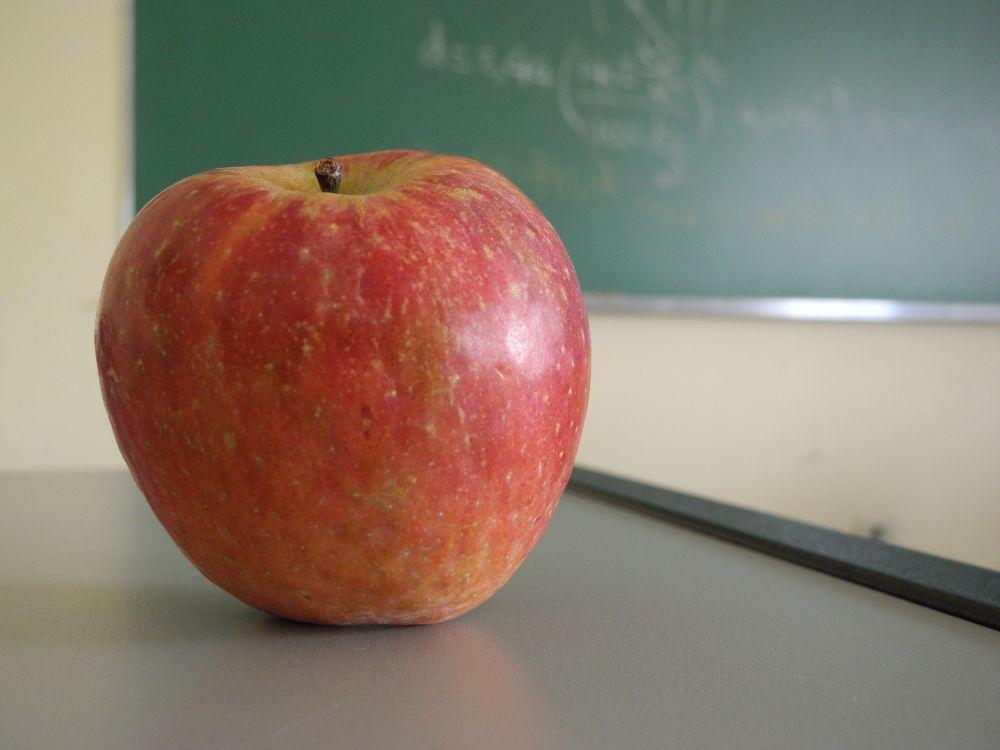 Aita tuua koolidesse õpetajatööst huvitatud noori!