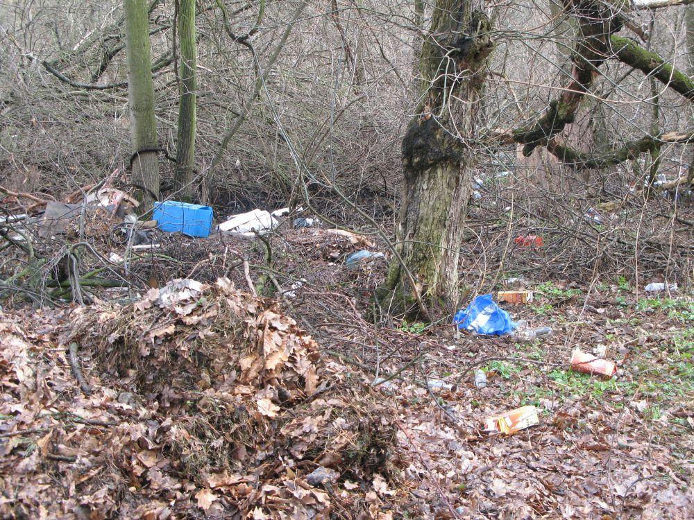 Ragn-Sells: korraldatud jäätmevedu aitab vähendada prügistamist