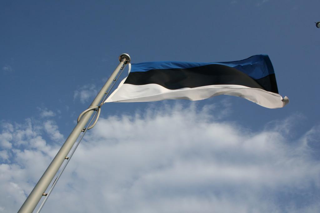 Homme mälestatakse Vabadussõja relvarahu ja Eesti vabaduse eest võidelnuid