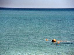 Päästjad-soovivad-tasuta-ujumiskursustega-vähendada-uppumiste-arvu.jpg