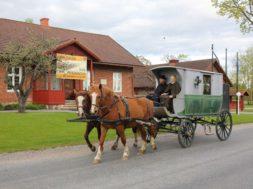 Maanteemuuseum-õpetab-hobusega-teed-tegema.jpg