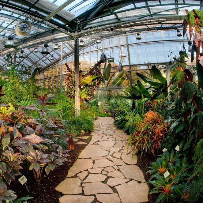Tallinna Botaanikaaias vahetub aastaaeg