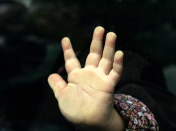 Käsi.jpg