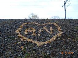 Lehtedest-süda.jpg