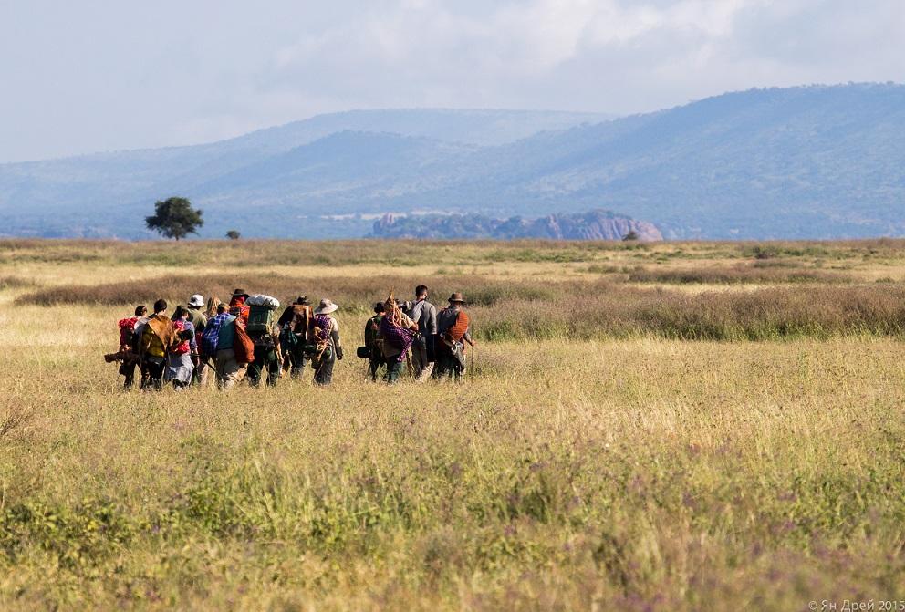 TANZANIA, AFRICA - Long shot of Human Herd migrating across plain. (Photo Credit: National Geographic Channels/Natasha Kutukova)