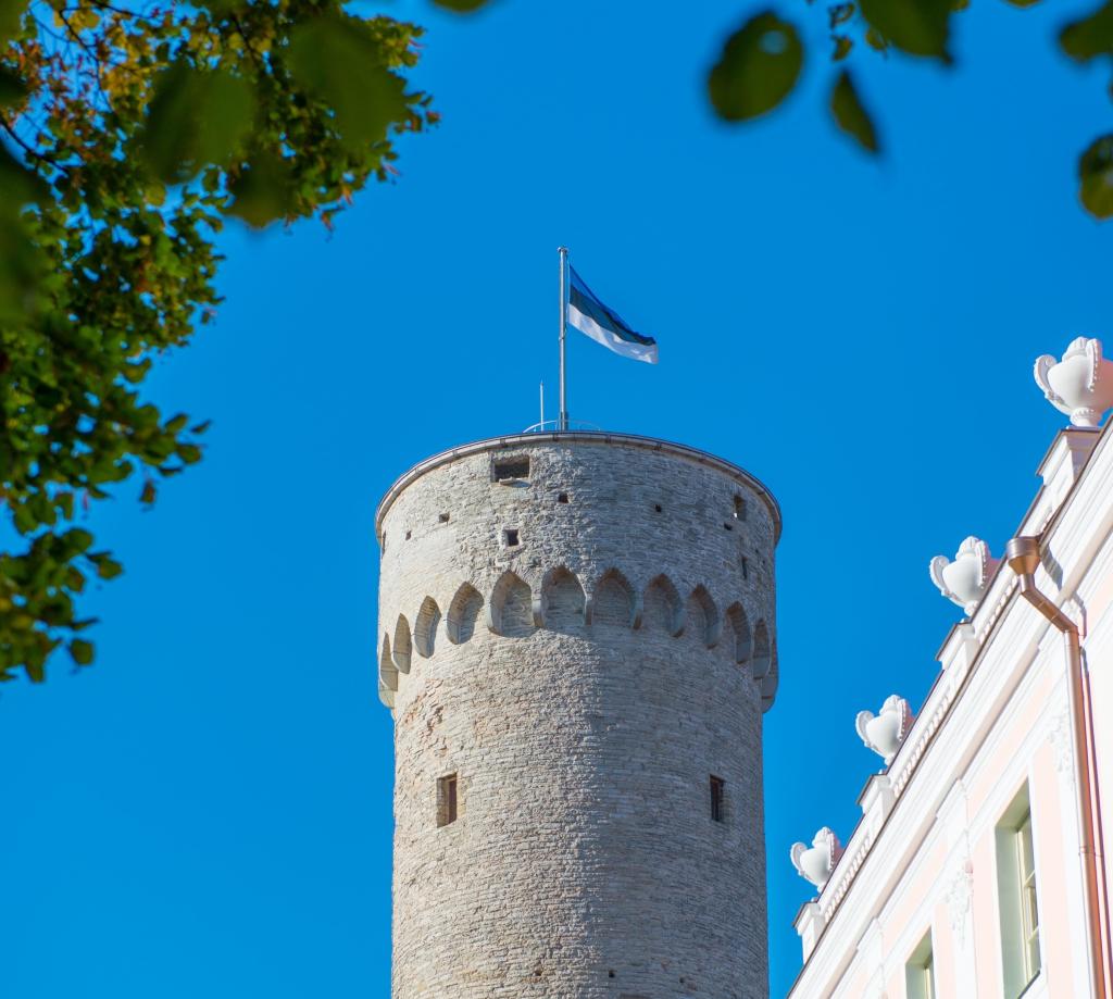 EESTI LIPU AUKS! Eesti lipupäeval käis Pika Hermanni tornis enam kui pooltuhat inimest