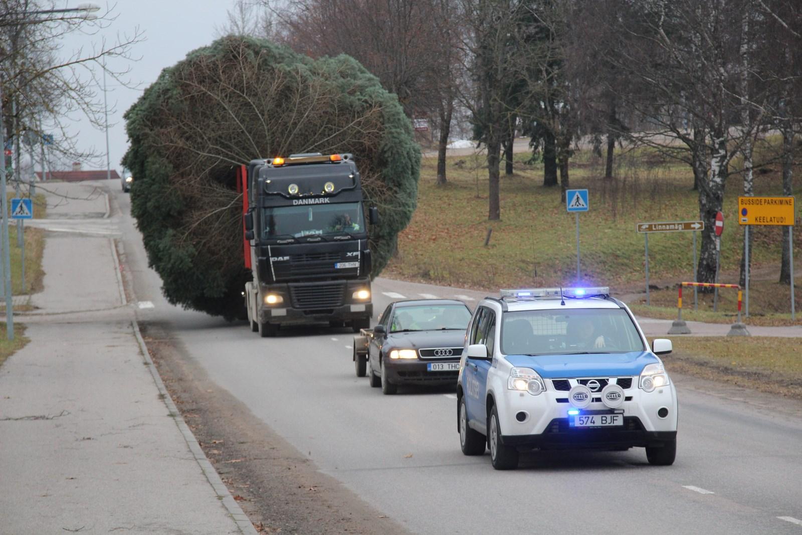 Täna saabus Talvepealinna Otepääle jõulupuu