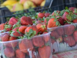 Pirita_turg_maasikad
