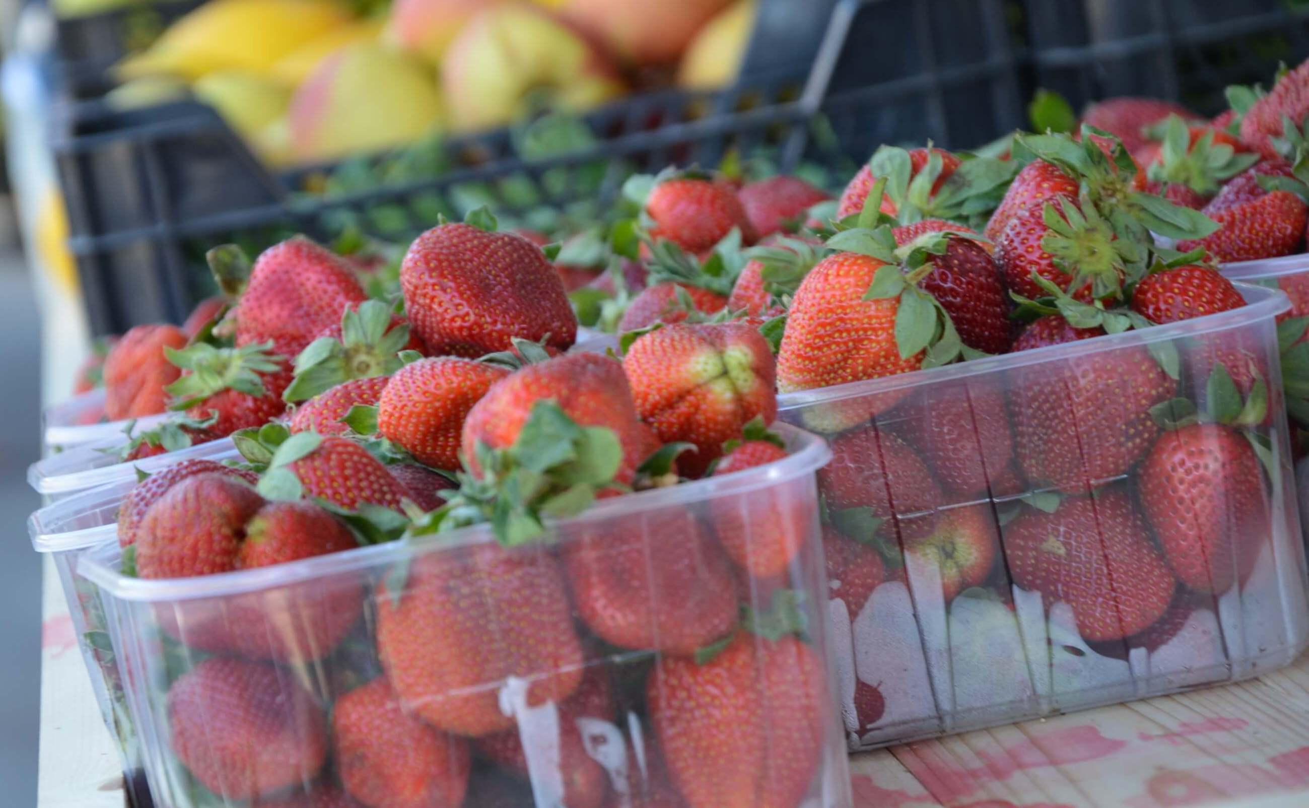 Maikuus avatud Pirita turg toob kodumaise talutoodangu piritalasteni