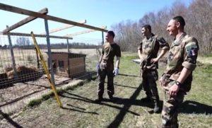 liitlasvägede-sõdurid