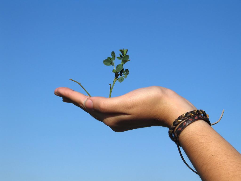 Vabatahtlikud Ungarist ja Taist õpetavad Eesti noori keskkonnasõbralikult tarbima