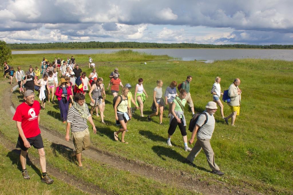 Vahva! Hiiu Folk viib külastajad hülgeid vaatama ja matkale läbi mere