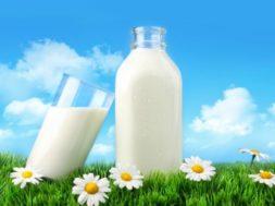 piimapäev