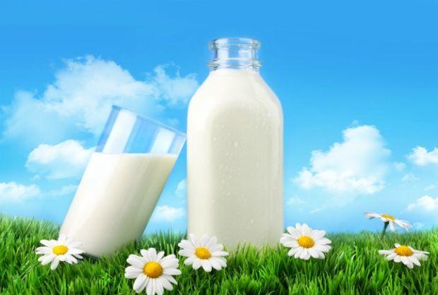 Täna on rahvusvaheline piimapäev