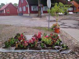 Paide linn jagab lilli