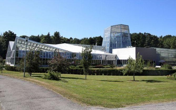 Pühapäeval toimuvad Tallinna Botaanikaaias tasuta teemaekskursioonid