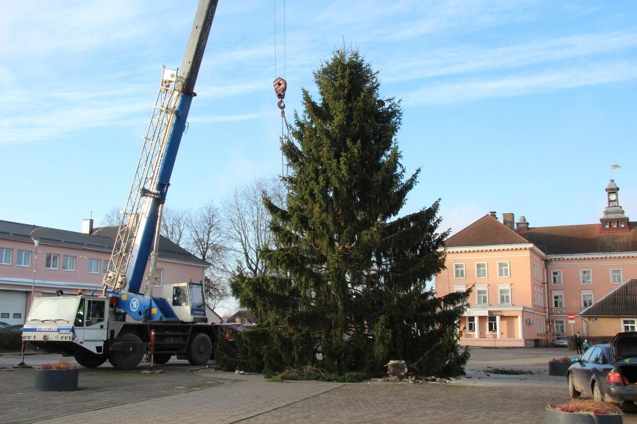 FOTOD! Otepää jõulupuu on kohal
