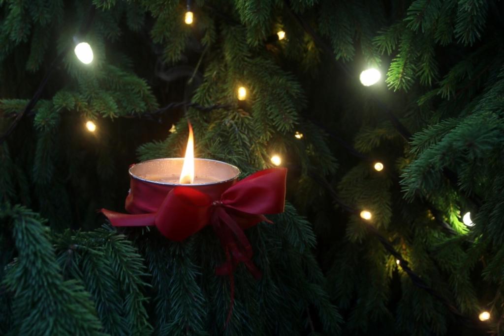 VIDEO I Eestimaa kaunitel jõulukuuskedel süüdati esimene advendiküünal