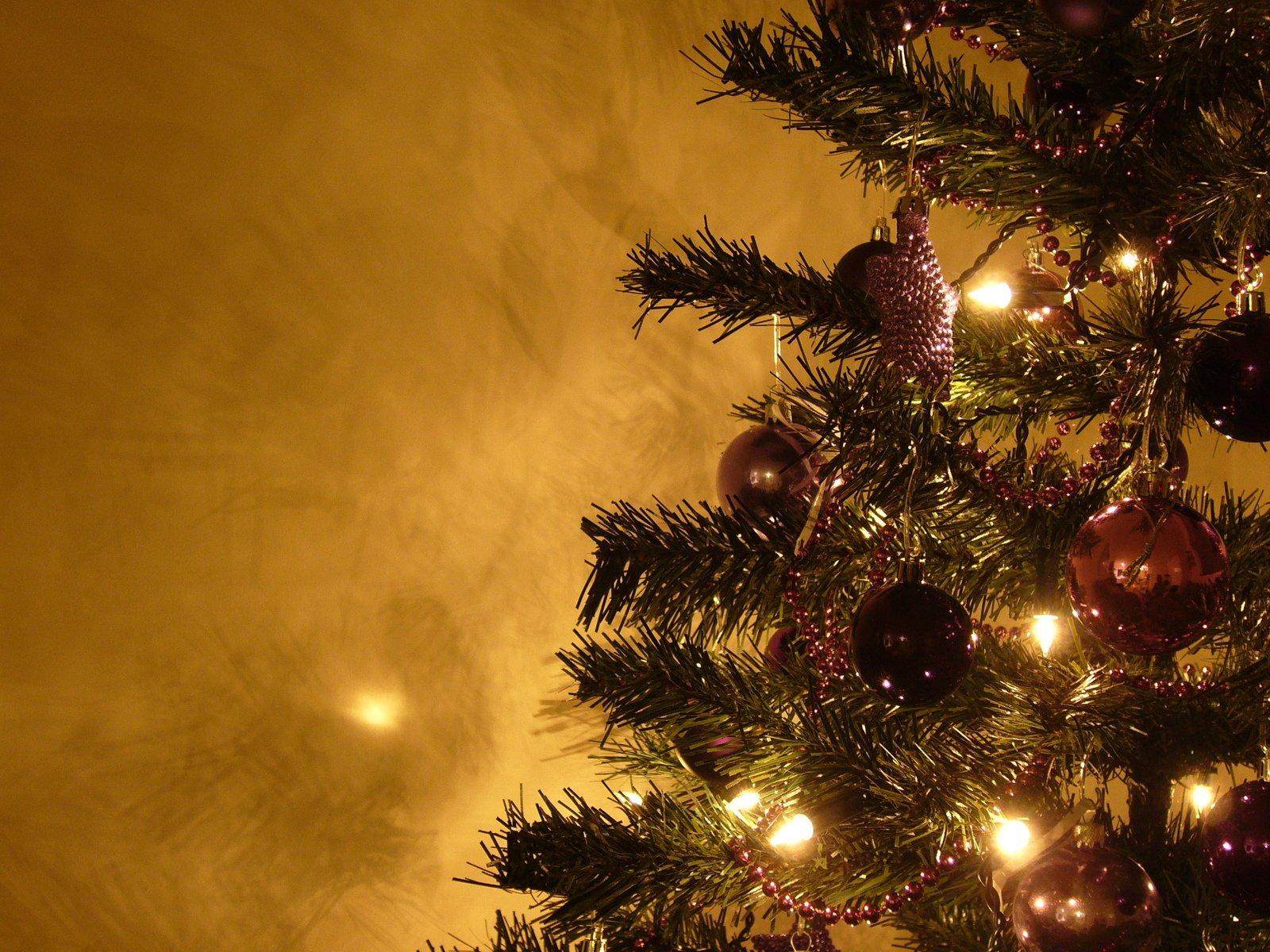 VÄÄRIKAS PÜHADE LÕPP! Jõulukuuskede kogumiskohad on avatud kõikides Tallinna linnaosades