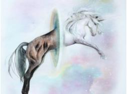 hobunehenry