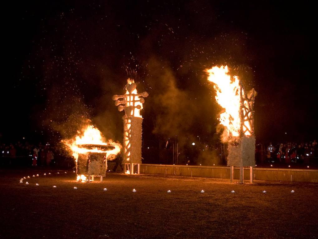 Jõulukuused tuleskulptuurideks ja toasoojaks