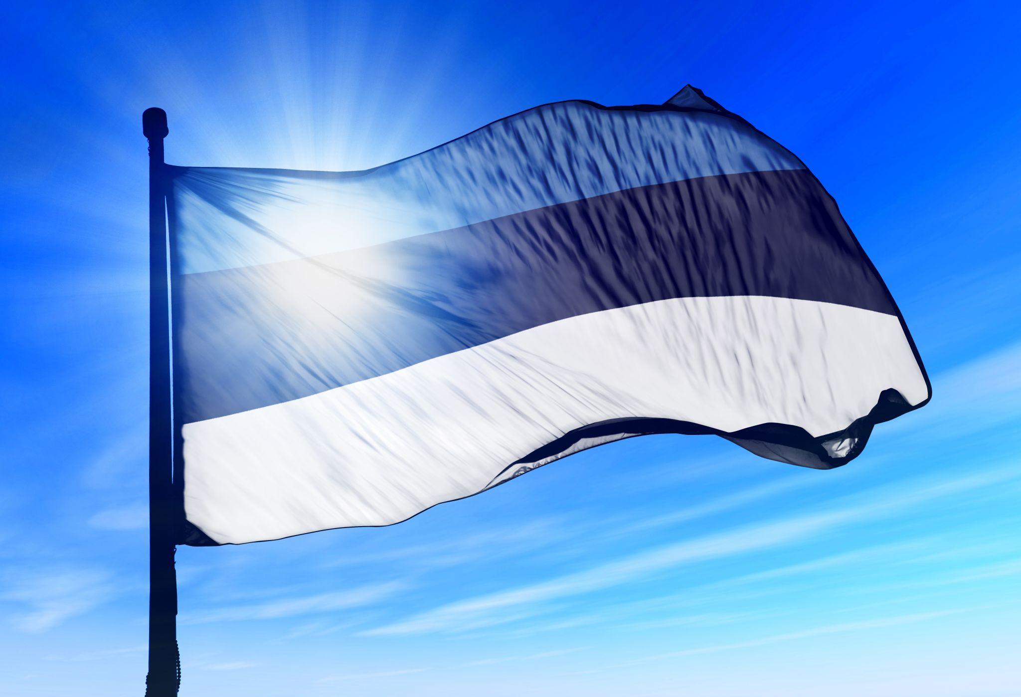 Põltsamaa kingib Eestile inimestest moodustatud lipu