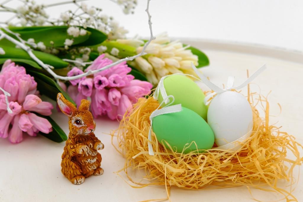 Loomakaitseorganisatsioon kutsub üles munadepühadel eelistama vabalt peetavate kanade mune