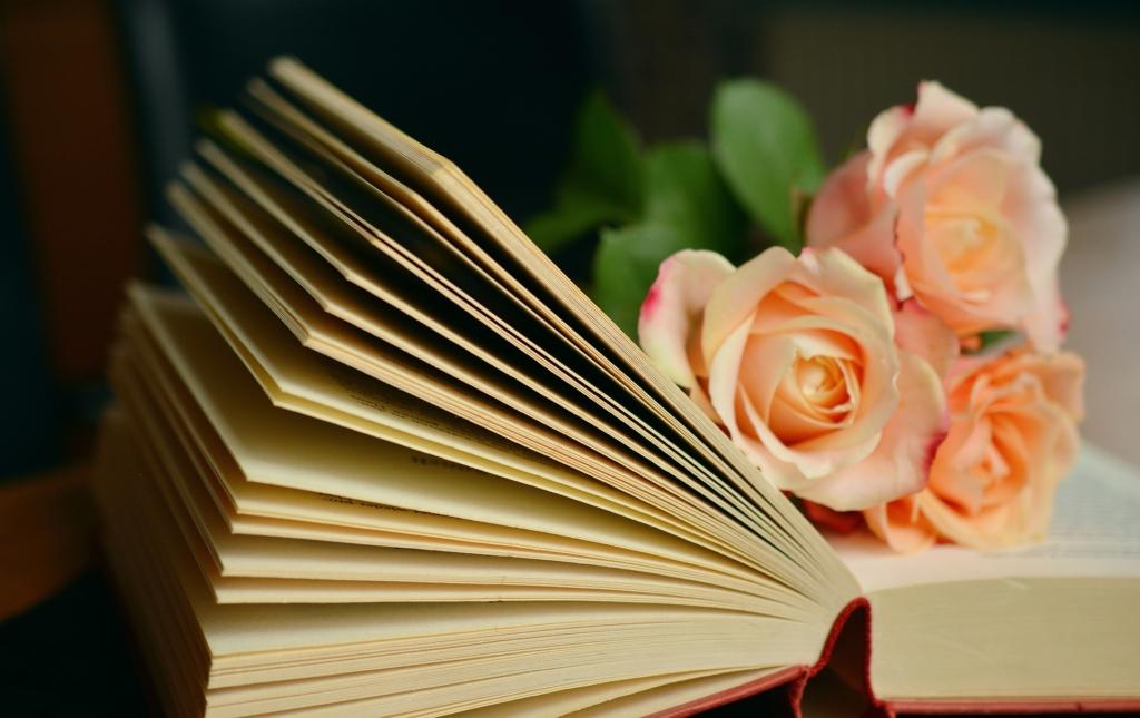 Tallinna Keskraamatukogu koduteenus toob raamatud koju kätte