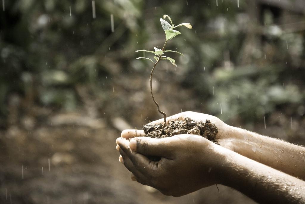 """""""Teeme ära"""" algatus Kompostiljon ootab inimesi mulda annetama"""