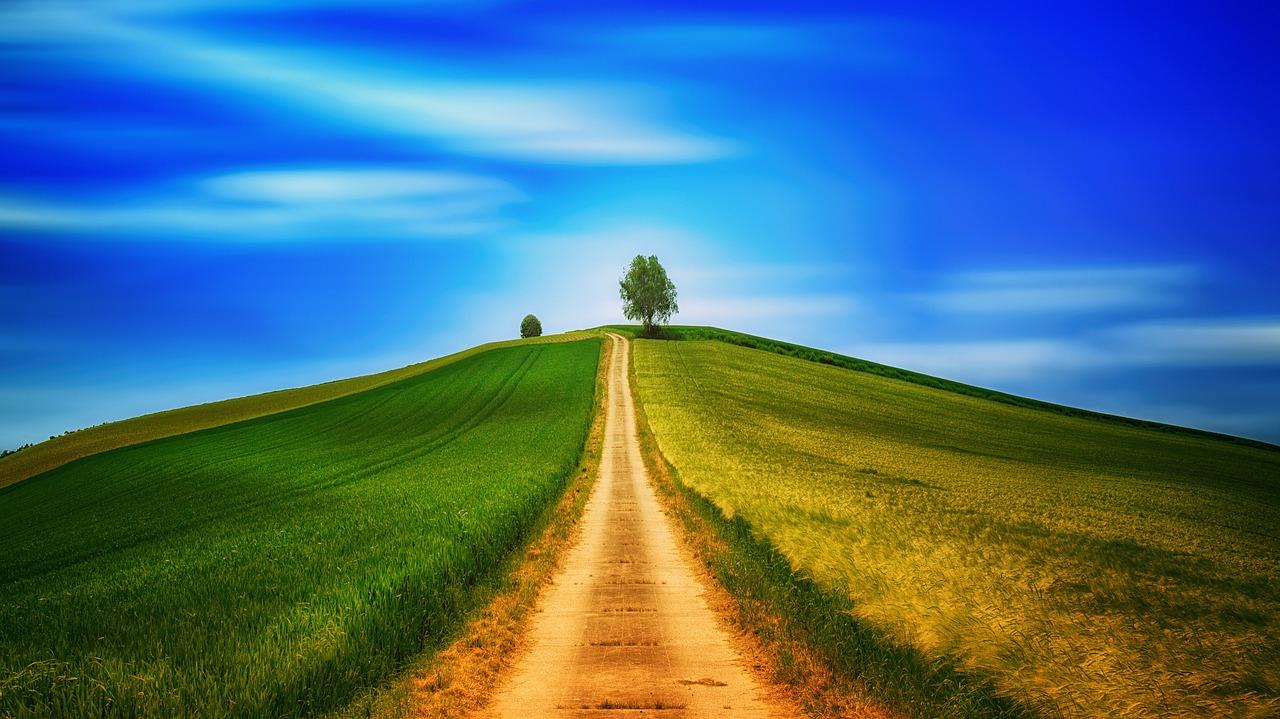 loodus.Pixabay