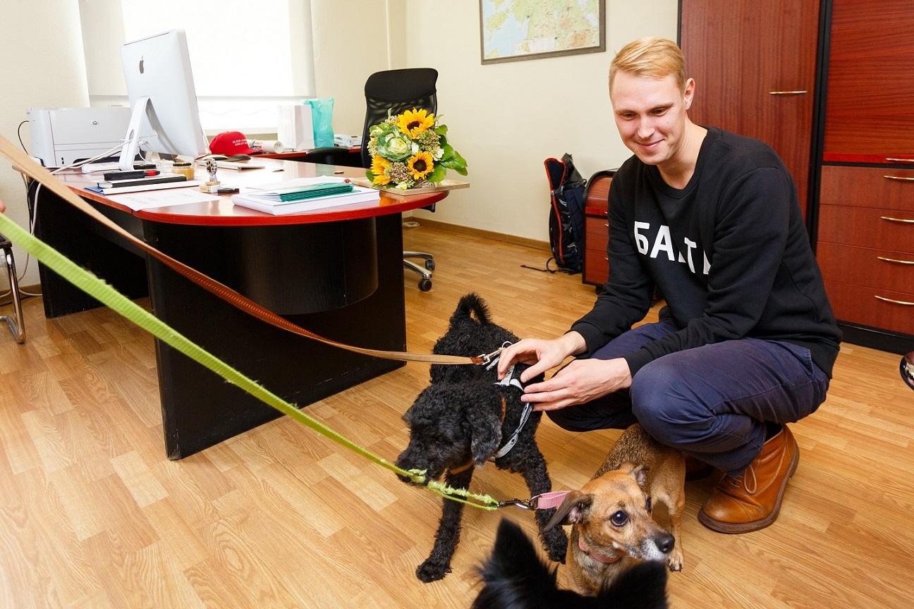 Raimond Kaljulaid sai Varjupaikade MTÜ-lt Elmo preemia