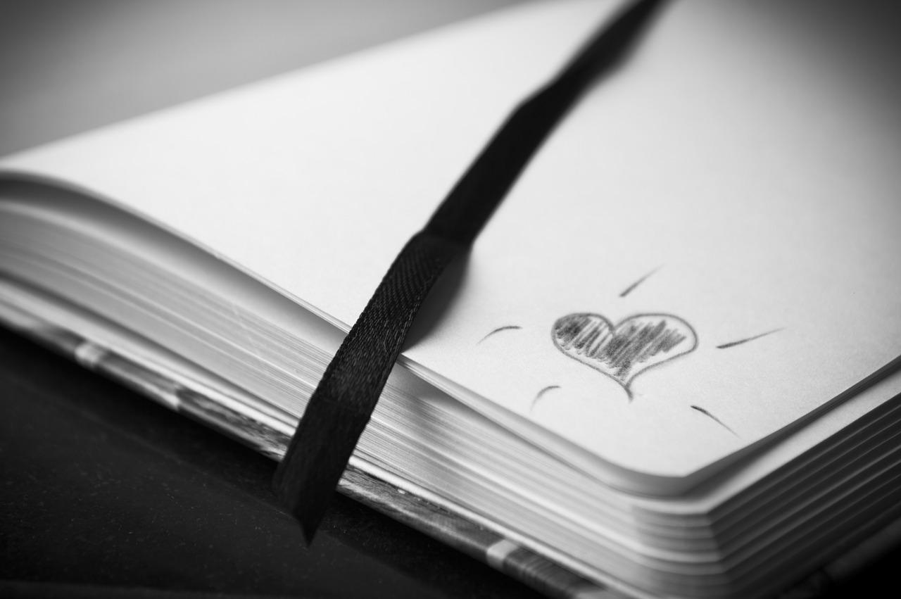 süda.Pixabay