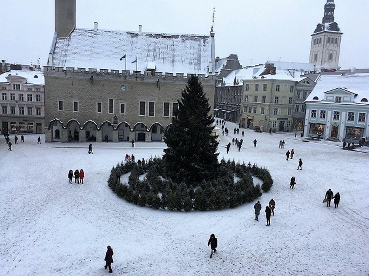 Tallinna Raekoja platsile tuleb Päikeselabürint