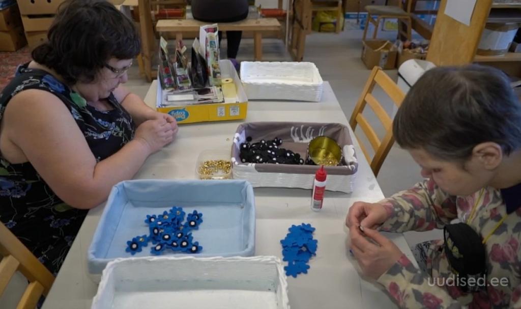 VAATA VIDEOT! Erivajadustega inimesed valmistavad veteranide auks sinililli
