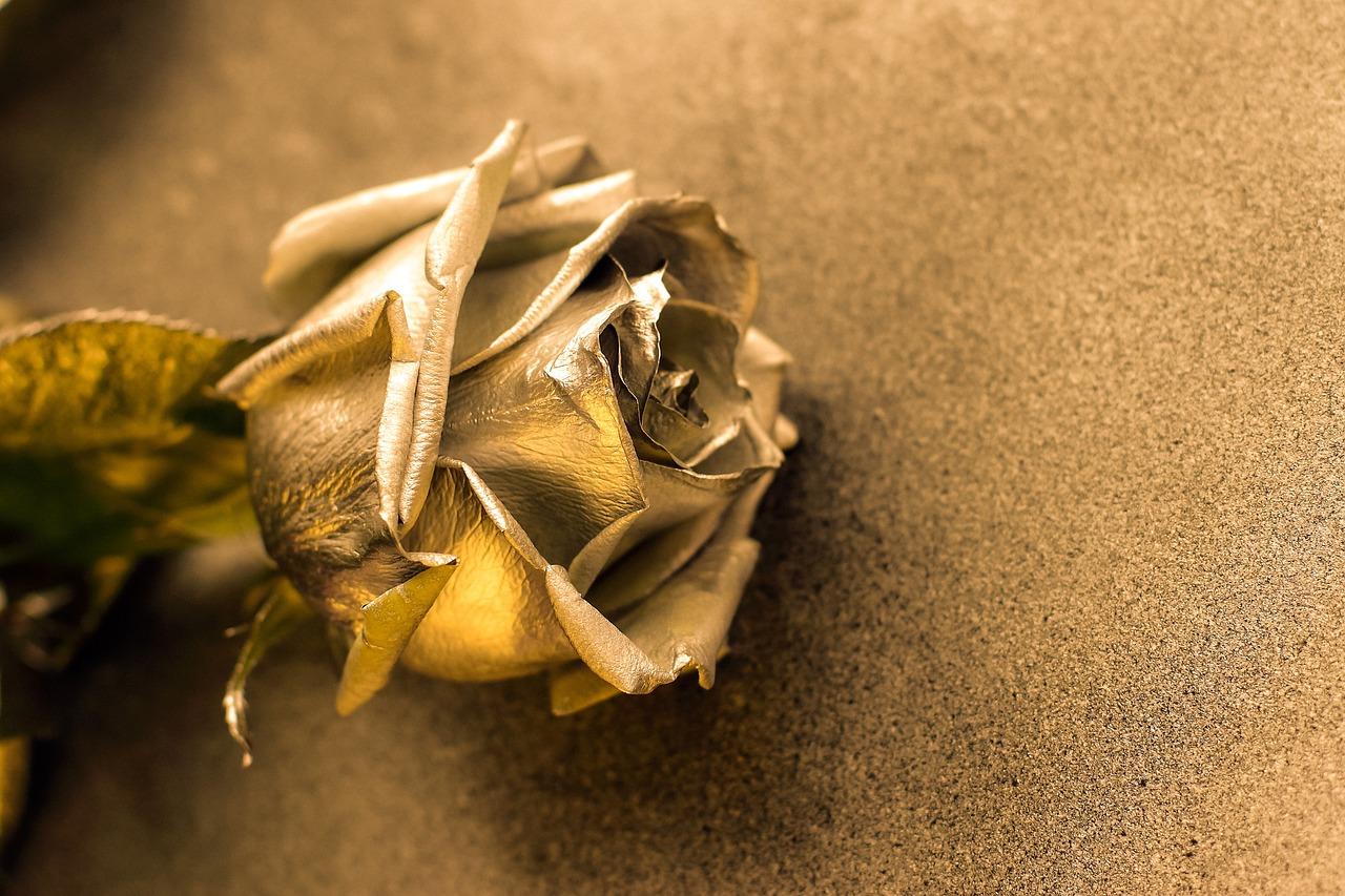 Pärnus toimub sügisel rahvusvaheline tantsu- ja laulukonkurss Golden Rose