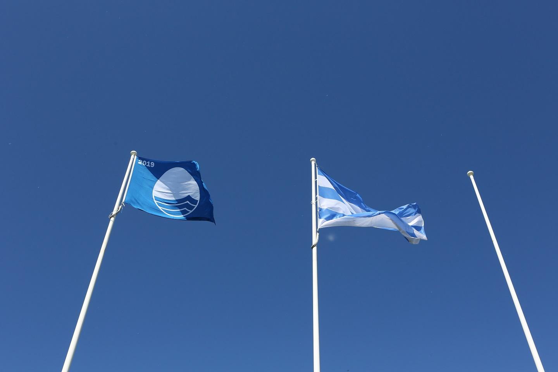 Tallinna sinilipurandades toimuvad keskkonnategevused